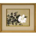 中島千波「山茶花」のサムネイル画像