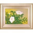 中島千波「洛陽・白雲山の野生牡丹」のサムネイル画像