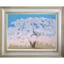 中島千波「高台寺の枝垂桜」のサムネイル画像