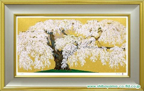 中島千波「神田の大糸桜」sセリグラフ