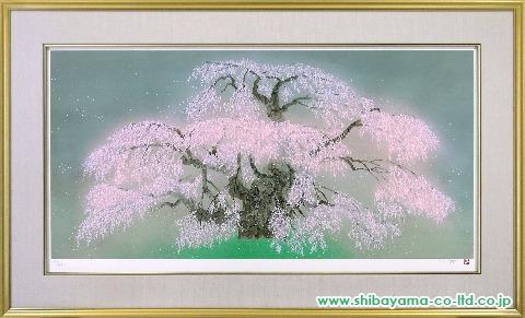 中島千波「瀧桜」s