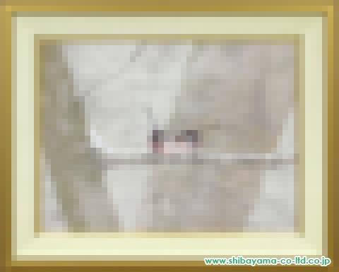 中野嘉之「雪中小禽」日本画12号